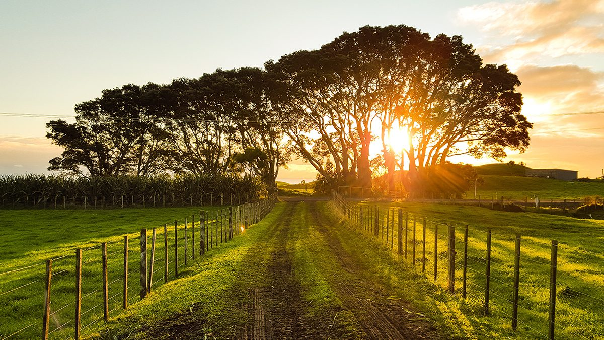 Inview property group_rural area
